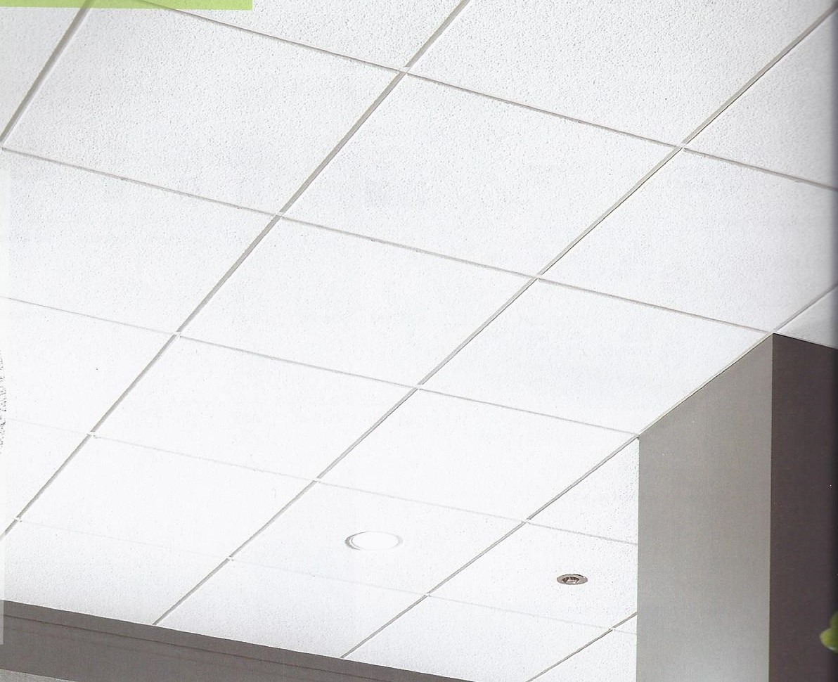 Acoustical suspension ceilings example of standard 2 x 2 grid doublecrazyfo Gallery